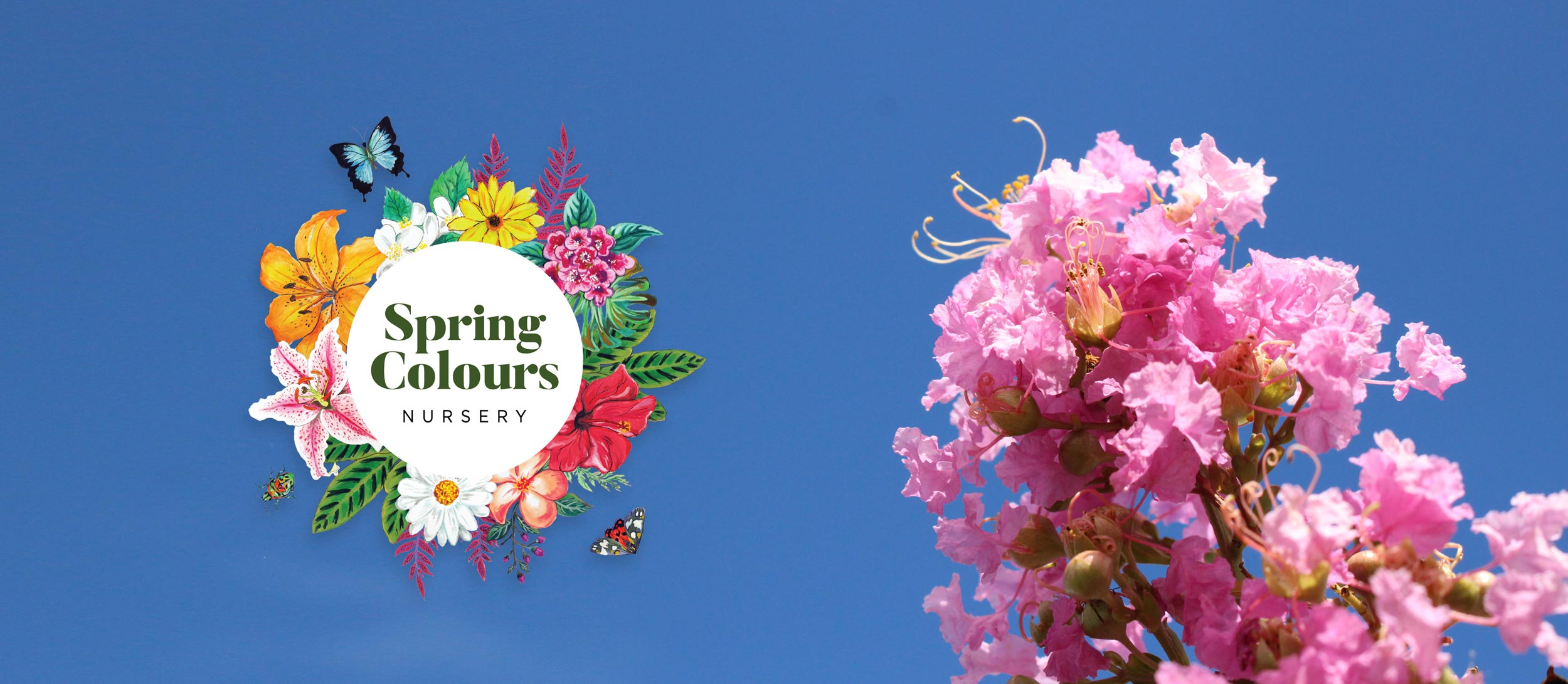 Spring Colours Nursery
